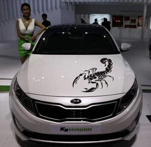 Tem decal bò cạp dán trang trí xe ô tô MS-102